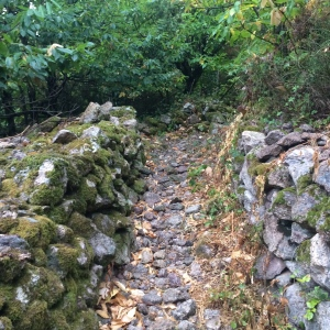 Rocky path and mossy dry stone wall
