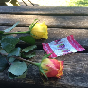 Roses and lolly rapper on picnic table